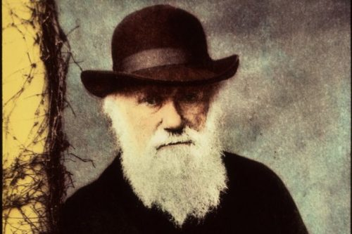 darwin-evrim-teorisini-ortaya-atan-bilim-adaminin-sira-disi-hayati1