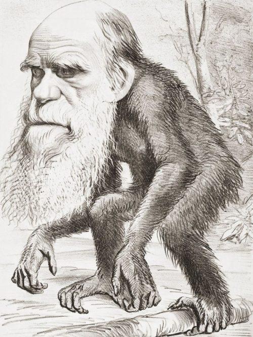 darwin-evrim-teorisini-ortaya-atan-bilim-adaminin-sira-disi-hayati6