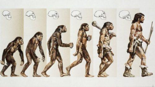 darwin-evrim-teorisini-ortaya-atan-bilim-adaminin-sira-disi-hayati8324
